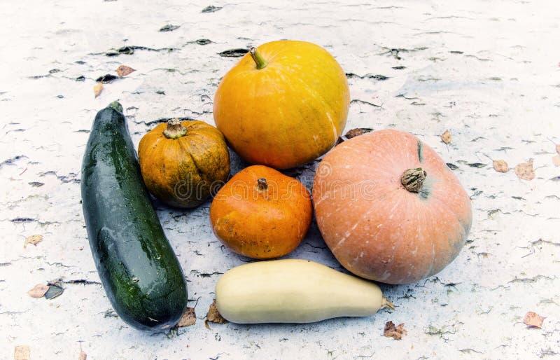Λαχανικά, κολοκύθα, κολοκύθια στοκ φωτογραφίες