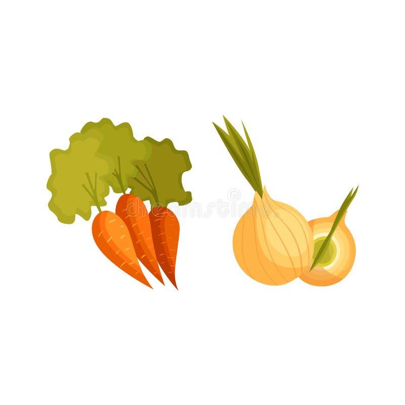 Λαχανικά κρεμμυδιών καρότων και βολβών ύφους κινούμενων σχεδίων απεικόνιση αποθεμάτων