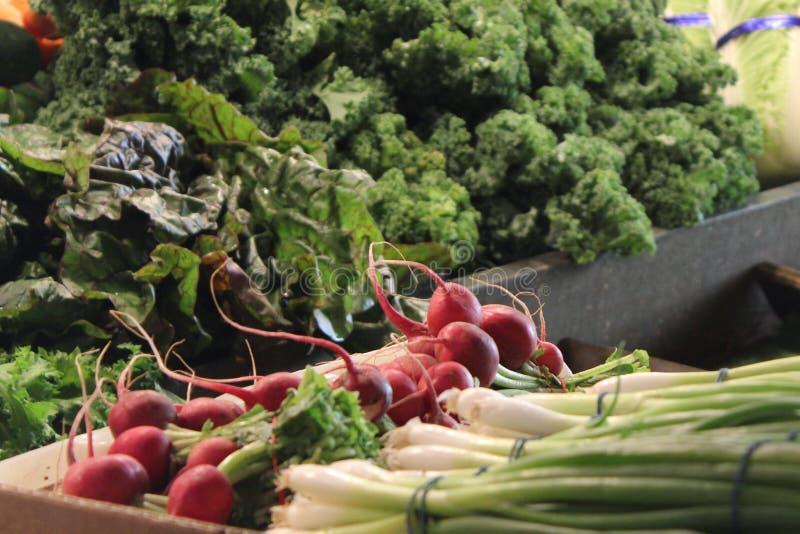 Λαχανικά στην αγορά στοκ φωτογραφία με δικαίωμα ελεύθερης χρήσης