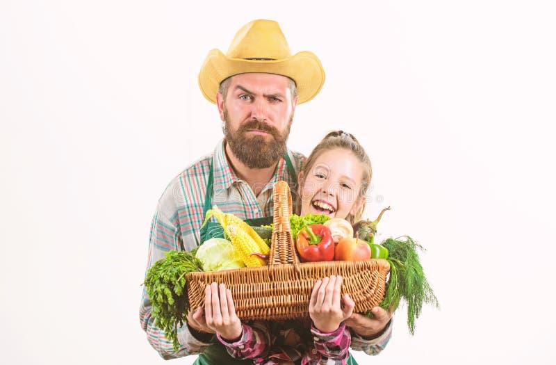 Λαχανικά συγκομιδών καλαθιών λαβής πατέρων και κορών οικογενειακών homegrown συγκομιδών της Farmer Ο πατέρας μου είναι αγρότης Κη στοκ εικόνες με δικαίωμα ελεύθερης χρήσης