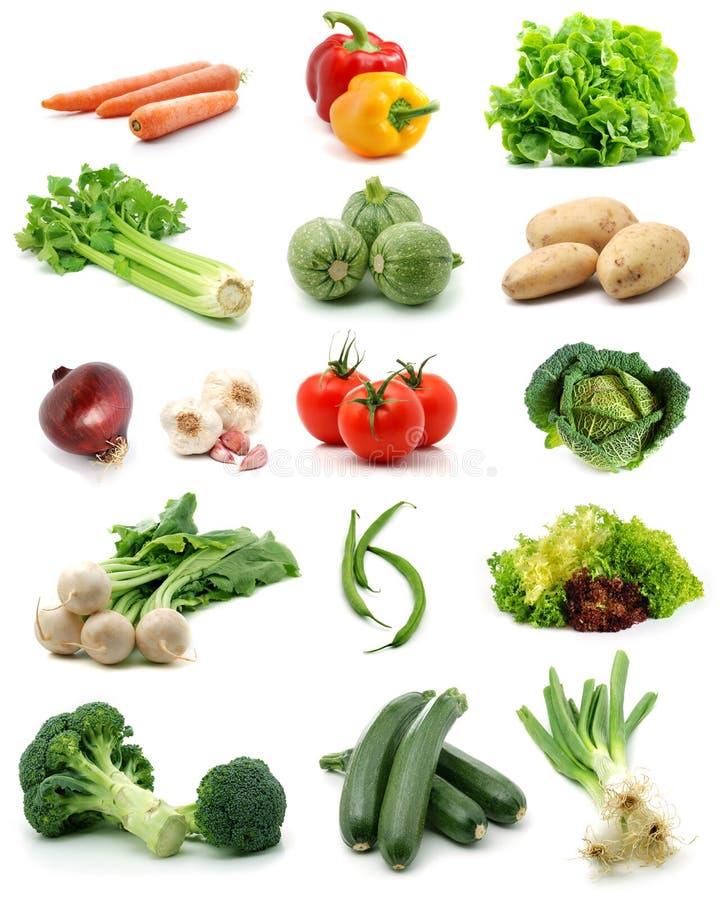 λαχανικά συλλογής στοκ εικόνα με δικαίωμα ελεύθερης χρήσης