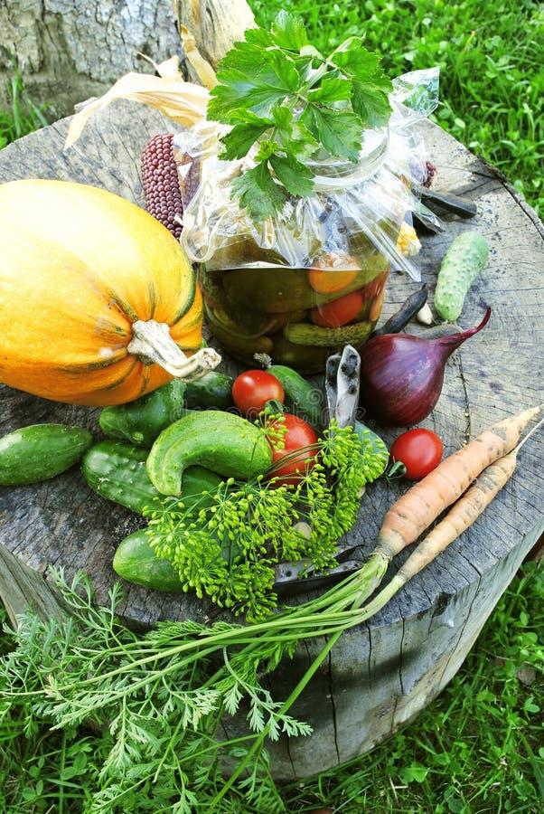 Λαχανικά φθινοπώρου στοκ εικόνες