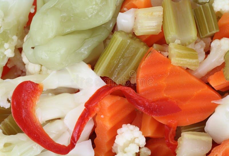 λαχανικά giardiniera στοκ εικόνες