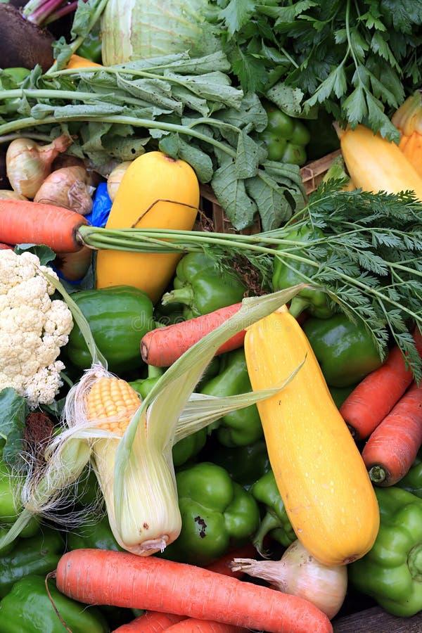 Download λαχανικό ανασκόπησης στοκ εικόνες. εικόνα από ομάδα, καλαμπόκι - 13182584
