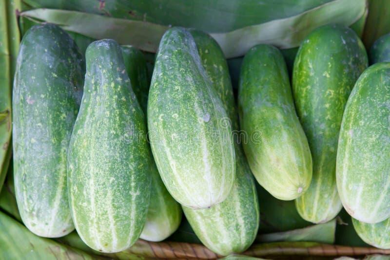 Download λαχανικό απωλειών ταχύτητ&omi Στοκ Εικόνες - εικόνα από αγγούρι, φρέσκος: 17052310