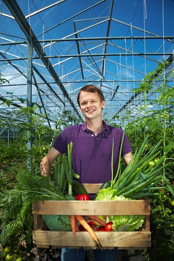 λαχανικό ατόμων κιβωτίων στοκ φωτογραφία με δικαίωμα ελεύθερης χρήσης