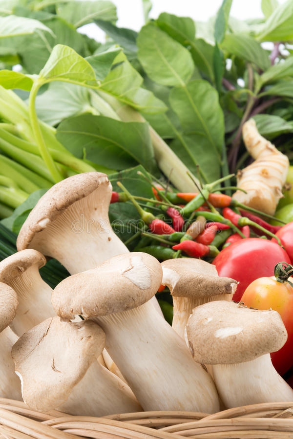 Λαχανικό μιγμάτων στοκ εικόνα