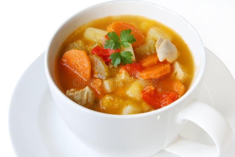 λαχανικό σούπας κοτόπουλου στοκ εικόνα με δικαίωμα ελεύθερης χρήσης