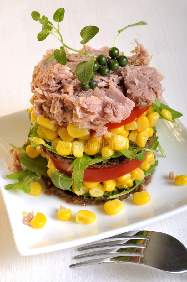 λαχανικό τόνου σαλάτας στοκ φωτογραφίες