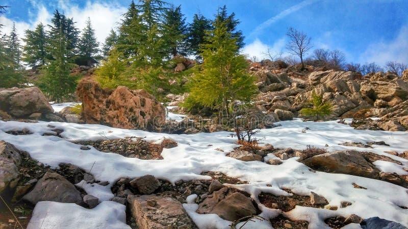 Λειώνοντας χιόνι στα ισραηλινά ύψη Hermon στοκ εικόνα
