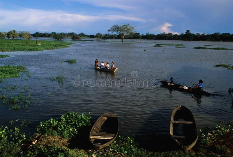 λεκάνη της Αμαζώνας στοκ φωτογραφία με δικαίωμα ελεύθερης χρήσης