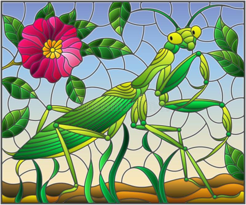 Λεκιασμένη απεικόνιση γυαλιού με τα πράσινα mantis και ρόδινο λουλούδι στο υπόβαθρο χλόης και ουρανού ελεύθερη απεικόνιση δικαιώματος