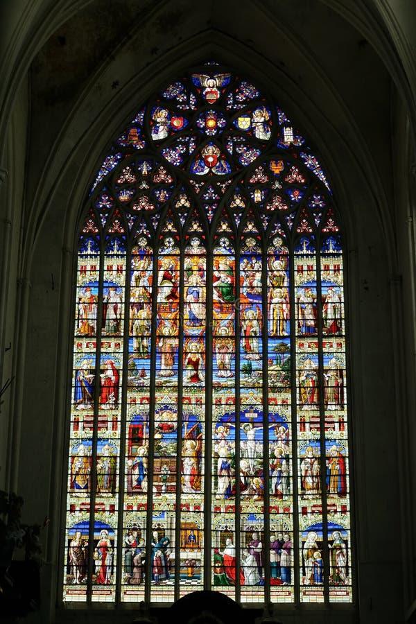 Λεκιασμένο παράθυρο γυαλιού στον καθεδρικό ναό του ST Rumbold σε Mechelen στοκ εικόνα
