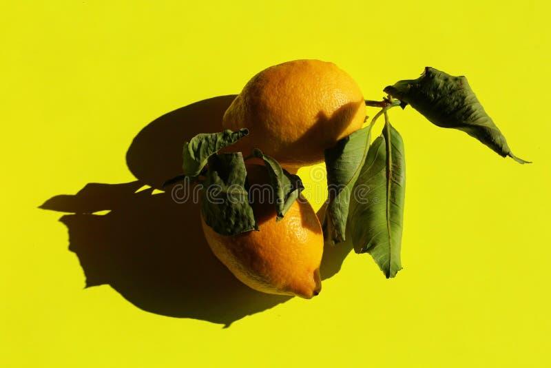 Λεμόνια στο κίτρινο υπόβαθρο, ακόμα ζωή στοκ φωτογραφίες με δικαίωμα ελεύθερης χρήσης
