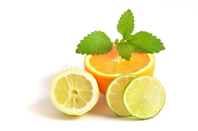 Λεμόνι, πορτοκάλι και ασβέστης στοκ εικόνα