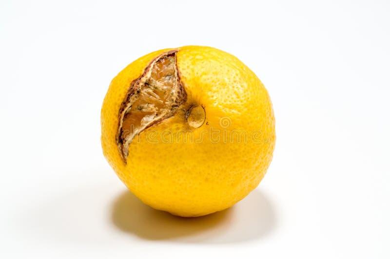 Λεμόνι που απομονώνεται σάπιο στο λευκό στοκ φωτογραφίες