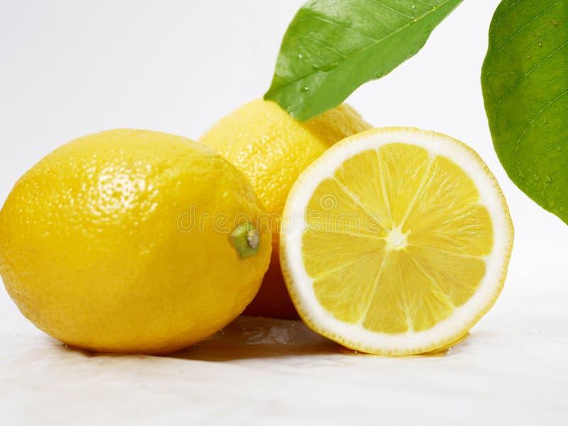 Λεμόνι φρέσκο με το φύλλο για την εικόνα φρούτων στοκ εικόνες