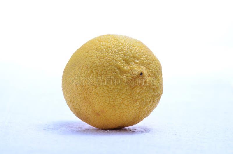 Λεμόνι friut στοκ εικόνες