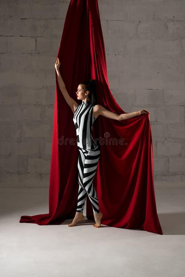 Λεπτή χαριτωμένη γυναίκα με την άποψη υφασμάτων στοκ εικόνες με δικαίωμα ελεύθερης χρήσης