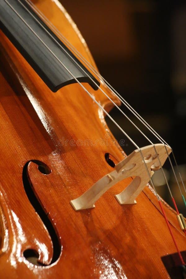 Λεπτομέρεια βιολοντσέλων με τις σειρές στοκ φωτογραφία με δικαίωμα ελεύθερης χρήσης
