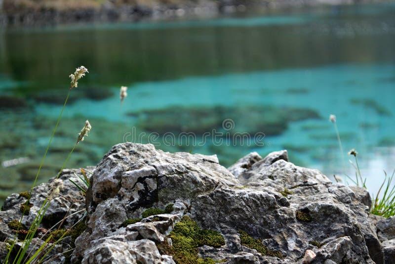 Λεπτομέρεια βράχου στο παλιό υπόβαθρο νερού στοκ φωτογραφία με δικαίωμα ελεύθερης χρήσης