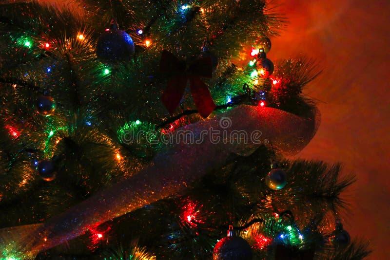 Λεπτομέρεια νύχτας χριστουγεννιάτικων δέντρων στοκ εικόνες με δικαίωμα ελεύθερης χρήσης
