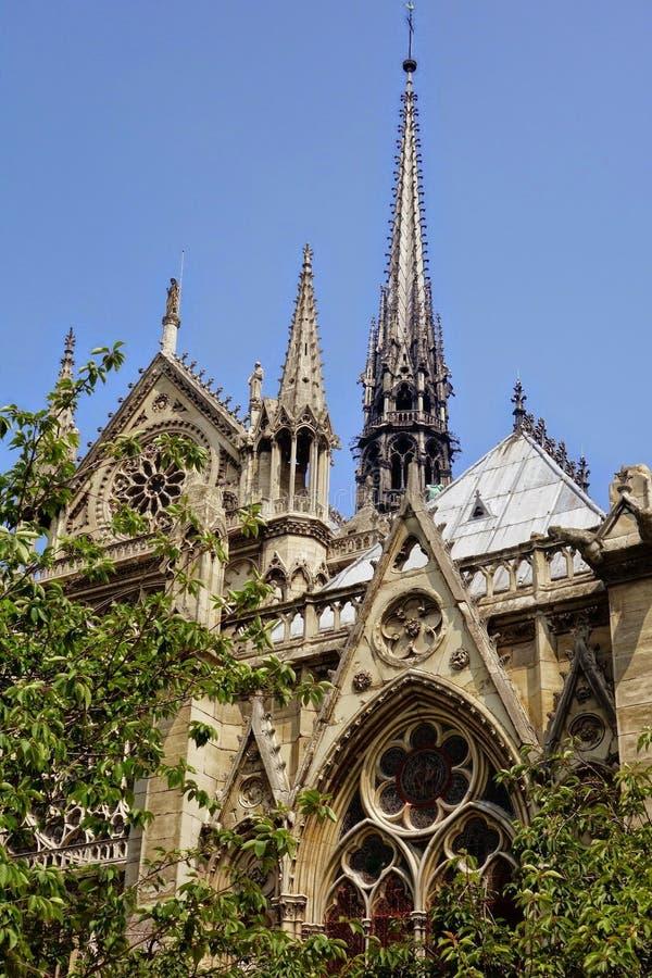 Λεπτομέρεια της Νοτρ Νταμ de Παρίσι στοκ φωτογραφία με δικαίωμα ελεύθερης χρήσης