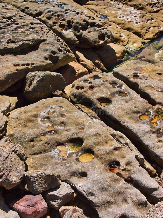 Λεπτομέρεια του ξεπερασμένου και διαβρωμένου σχηματισμού βράχου θάλασσας ψαμμίτη στοκ εικόνες