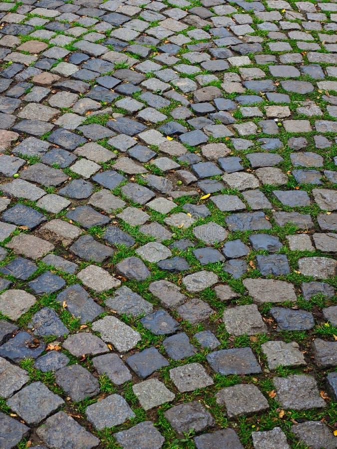 Λεπτομέρεια των ευρωπαϊκών φυσικών Cobble πετρών στοκ εικόνες με δικαίωμα ελεύθερης χρήσης