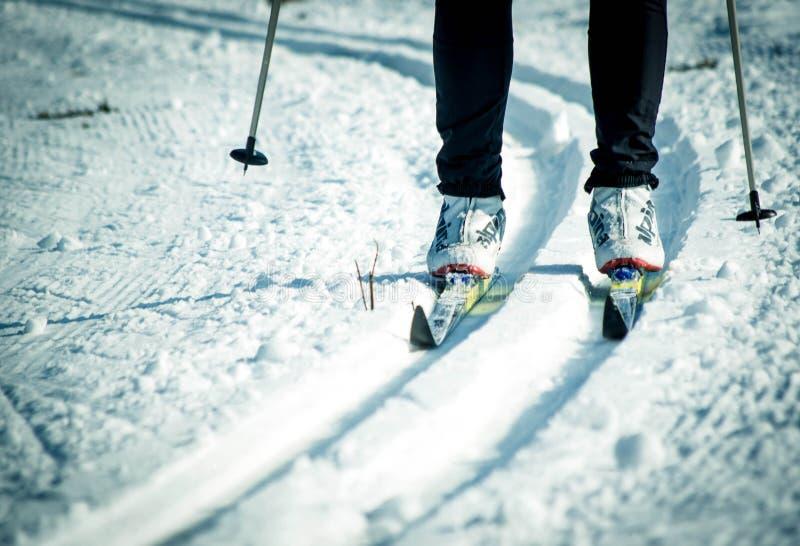 Λεπτομέρεια των ποδιών ενός διαγώνιου κάνοντας σκι ατόμου χώρας στοκ εικόνες