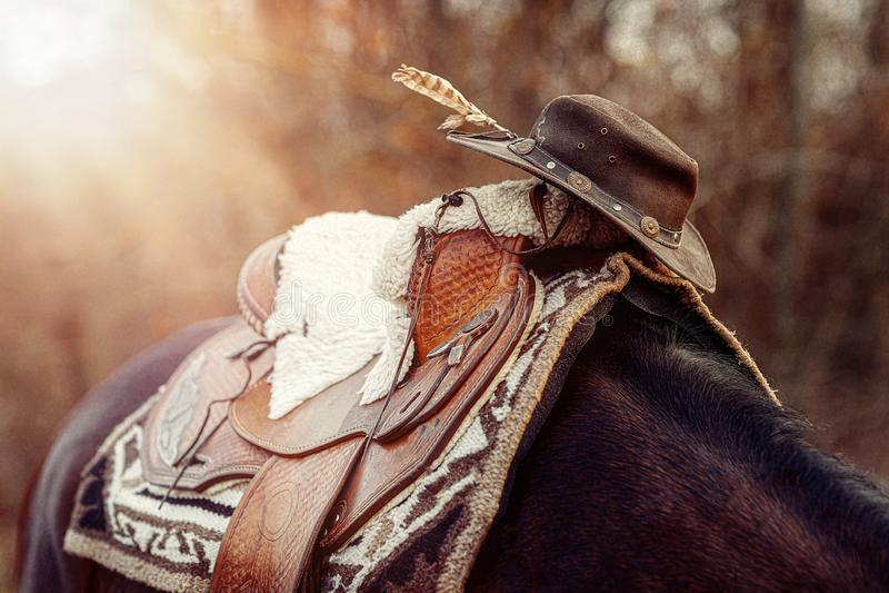 Λεπτομέρεια όμορφου αλόγου με φυσικές υφές και καπέλο στοκ εικόνα με δικαίωμα ελεύθερης χρήσης
