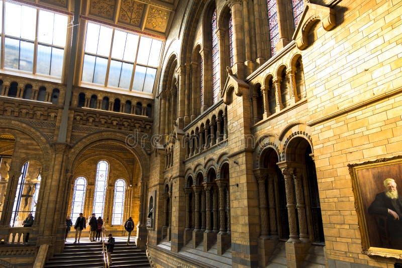 Λεπτομέρειες αρχιτεκτονικής στην κύρια αίθουσα του μουσείου φυσικής ιστορίας και πορτρέτο του Charles Δαρβίνος ` s στο πρώτο πλάν στοκ φωτογραφία με δικαίωμα ελεύθερης χρήσης