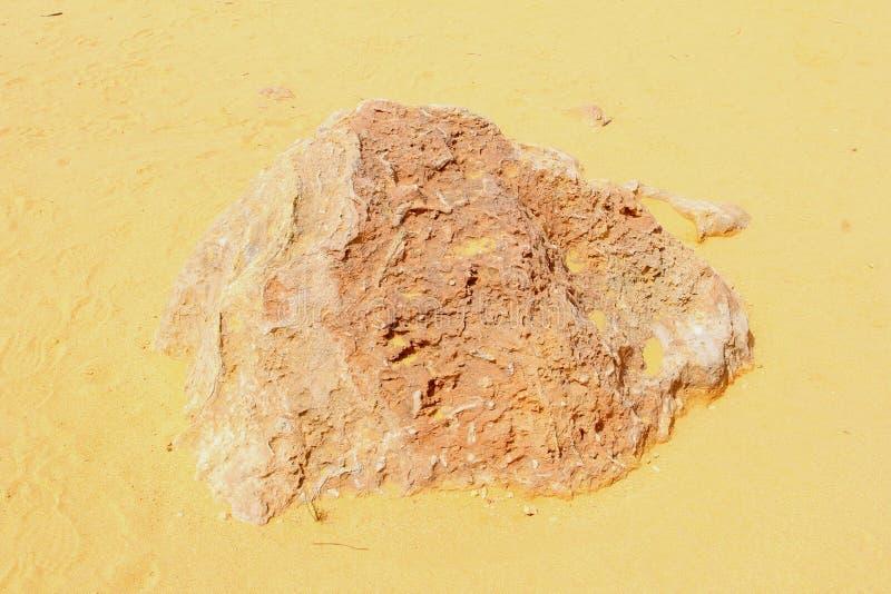 Λεπτομέρειες, δομές και χρώματα της ερήμου στοκ φωτογραφία με δικαίωμα ελεύθερης χρήσης