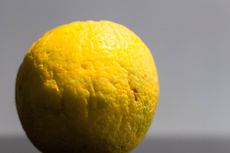 Λεπτομερής σύσταση ενός γλυκού ασβέστη στοκ φωτογραφία με δικαίωμα ελεύθερης χρήσης