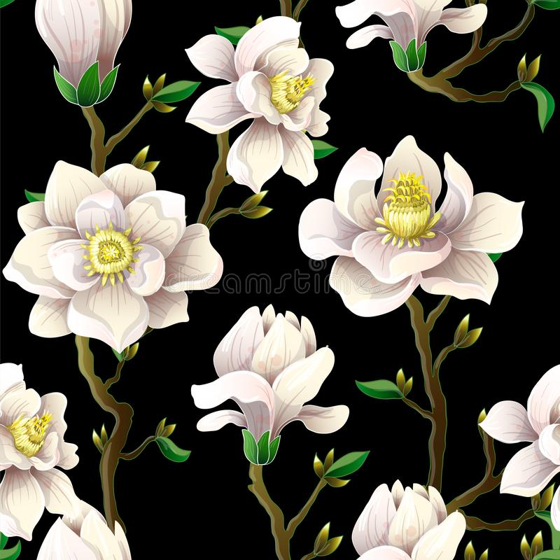 Λεπτό άνευ ραφής σχέδιο με τα λουλούδια magnolia σε ένα μαύρο υπόβαθρο ελεύθερη απεικόνιση δικαιώματος