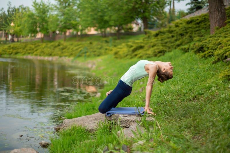Λεπτό κορίτσι brunette που κάνει τη γιόγκα το καλοκαίρι σε έναν πράσινο χορτοτάπητα από τη λίμνη στοκ φωτογραφίες με δικαίωμα ελεύθερης χρήσης