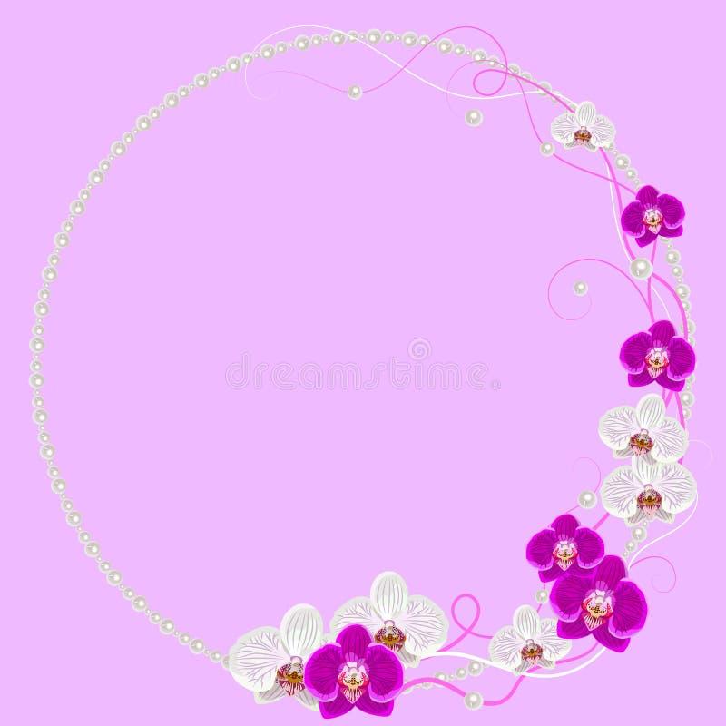 Λεπτό πλαίσιο με τα λουλούδια και τα μαργαριτάρια ορχιδεών επάνω απεικόνιση αποθεμάτων