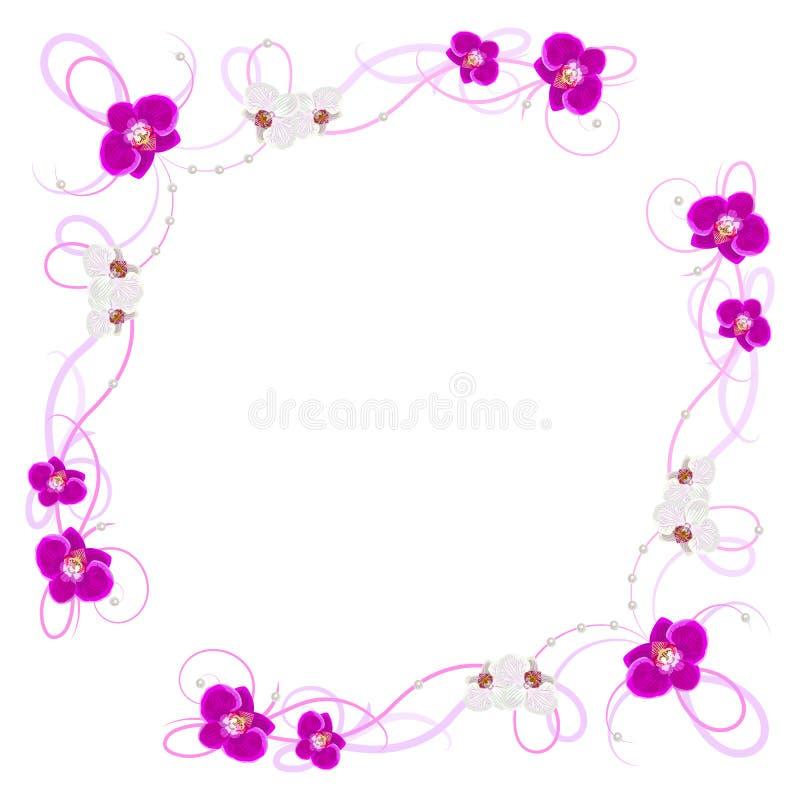 Λεπτό πλαίσιο με τα λουλούδια ορχιδεών διανυσματική απεικόνιση