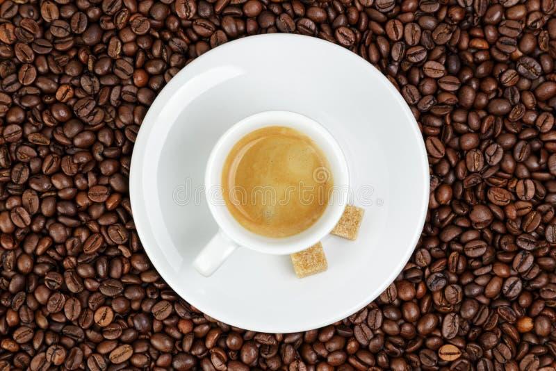 Λεπτό espresso στο φλυτζάνι στα φασόλια καφέ στοκ φωτογραφία με δικαίωμα ελεύθερης χρήσης