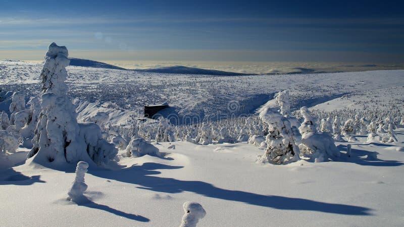Λευκότητα στα γιγαντιαία βουνά/Karkonosze στοκ εικόνες με δικαίωμα ελεύθερης χρήσης