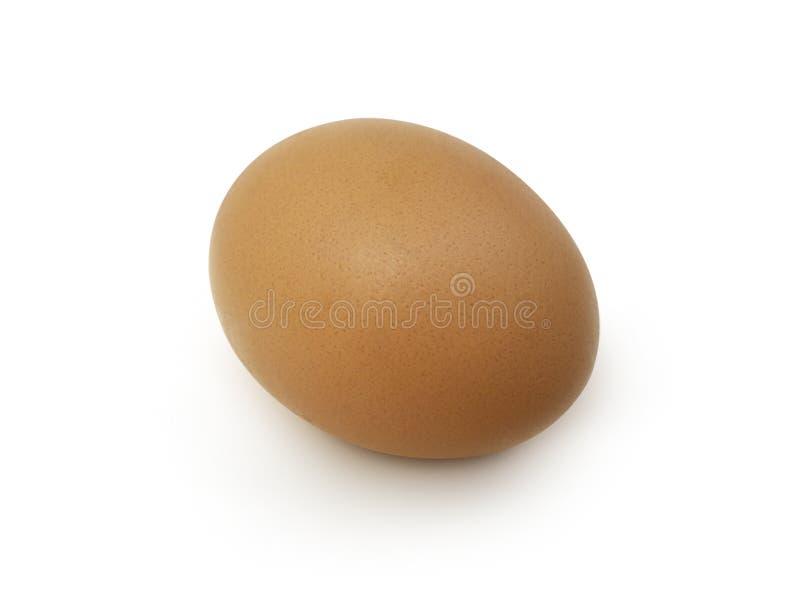 λευκό αυγών ανασκόπησης στοκ φωτογραφία με δικαίωμα ελεύθερης χρήσης