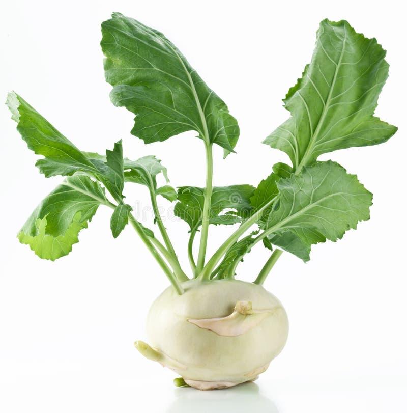 λευκό γογγυλιού λάχαν&omega στοκ εικόνες με δικαίωμα ελεύθερης χρήσης