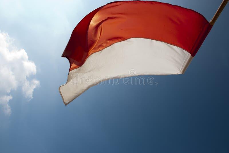 Λευκό και κόκκινη σημαία στον ήλιο στοκ εικόνες με δικαίωμα ελεύθερης χρήσης