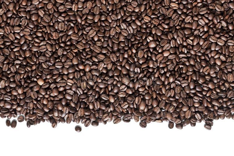 λευκό καφέ φασολιών ανασ& στοκ φωτογραφίες