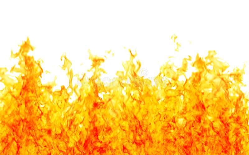 λευκό καψίματος διανυσματική απεικόνιση