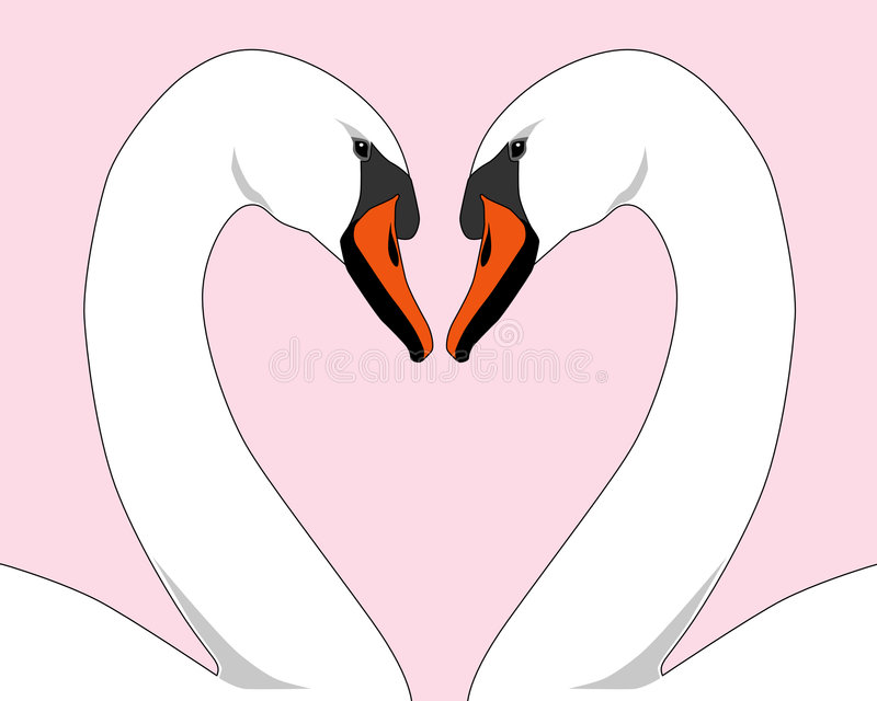 Download λευκό κύκνων αγάπης απεικόνιση αποθεμάτων. εικονογραφία από ρωμανικός - 399215