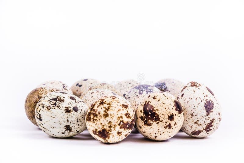 λευκό νησοπέρδικων αυγών τρόφιμα υγιή στοκ φωτογραφία με δικαίωμα ελεύθερης χρήσης