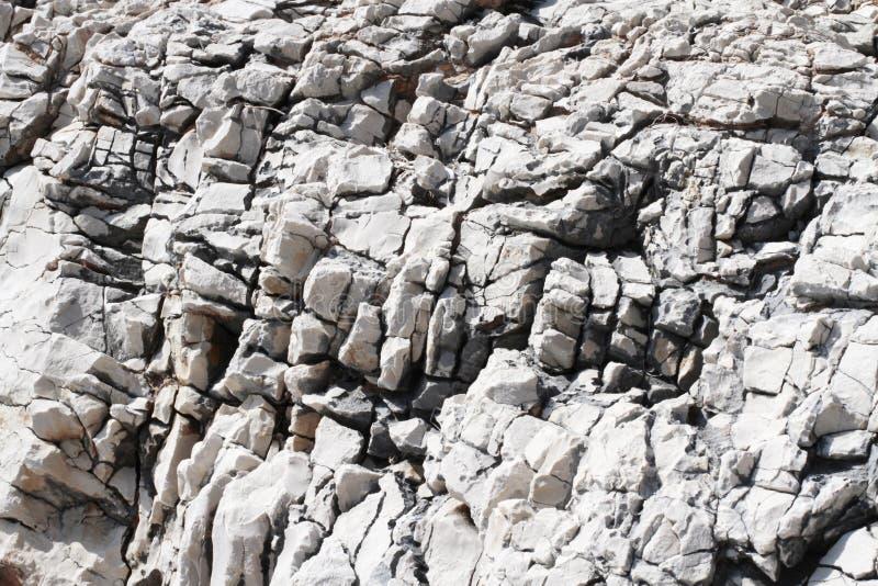 λευκό πετρών στοκ φωτογραφία