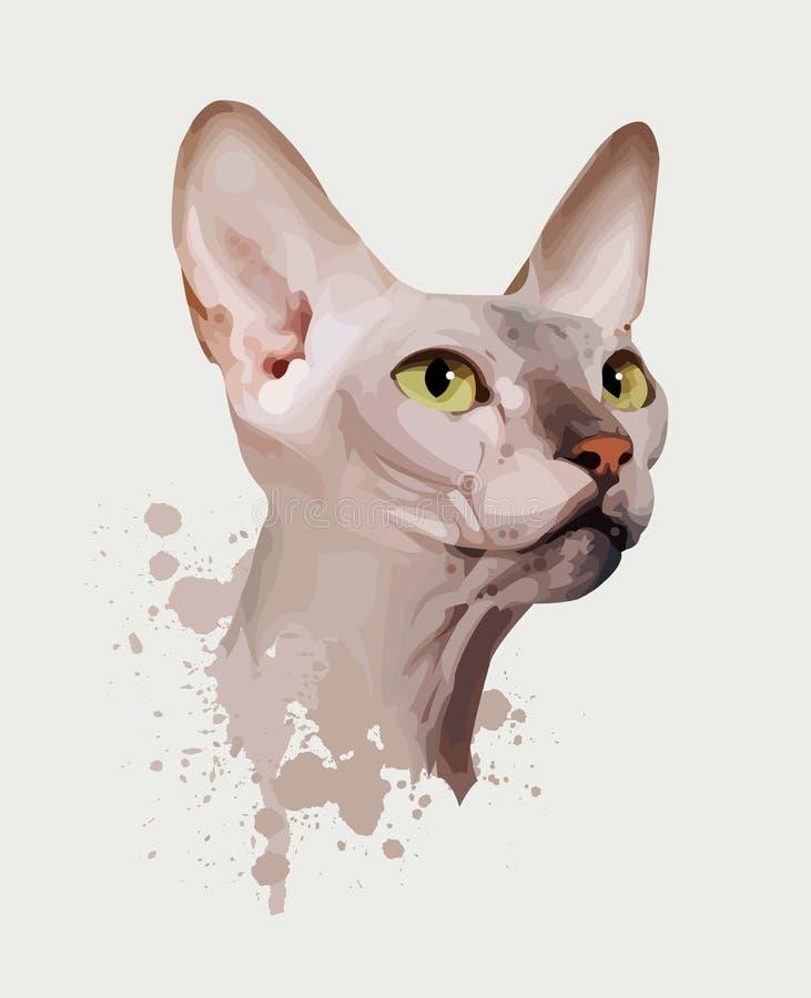 λευκό πορτρέτου γατών αν&alpha διανυσματική απεικόνιση