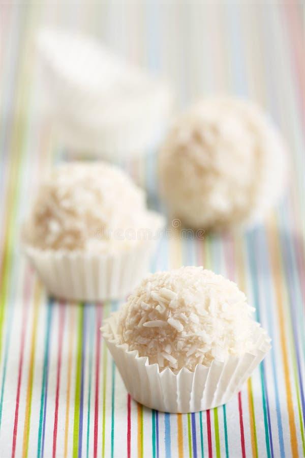 λευκό τρουφών σοκολάτα&si στοκ εικόνες με δικαίωμα ελεύθερης χρήσης